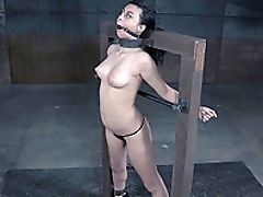 BDSM, Fetish, Private, Punishment, Rough, Torture,