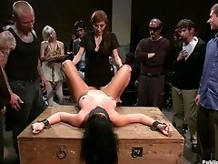 Ashli Ames, Bdsm, Princess Donna,