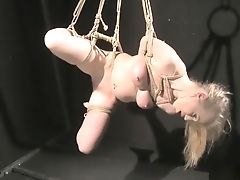 Babe, Big Tits, Blonde, Bondage, Submissive,