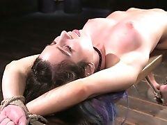 BDSM, Beauty, Big Tits, Bondage, Brunette, Examination, HD, Kinky, Moaning, Pussy,