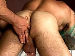 Ass, Bisexual, Hairy, Hunk, Massage, Muscular,
