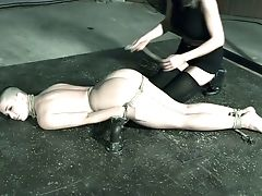 BDSM, Beauty, Cute, Horny, Mistress, Slut, Torture,