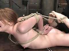 BDSM, Bondage, Madison Young, Model,