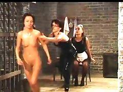 Domination Féminine, Lesbiennes, Domination De Lesbiennes, Frapper ,